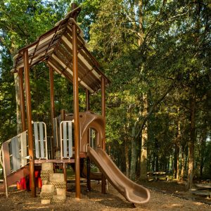 Natural Looking Playground with Timbers in Tennessee Park gallery thumbnail