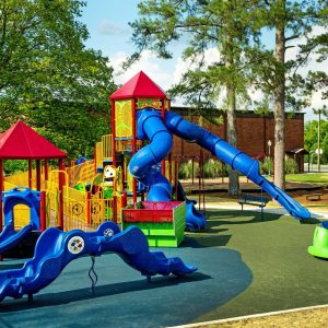 Inclusive Playground with Roofs, Slides, and Sensory Wave Climber in Georgia gallery thumbnail